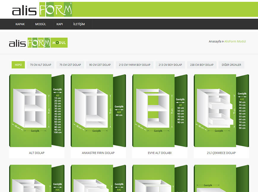 Alisform Web Site Tasarımı