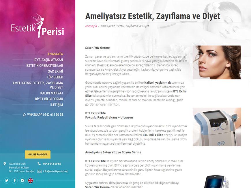 Estetik Perisi Web Site Tasarımı