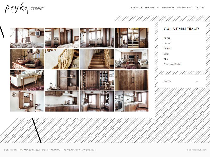 Web Tasarım - Peyke
