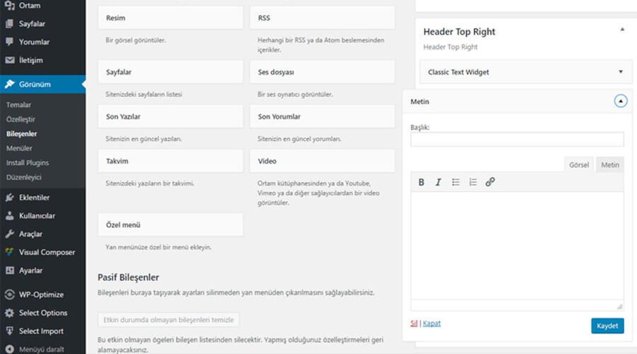 WordPress 4.8 Sürümü Bileşen Hatası