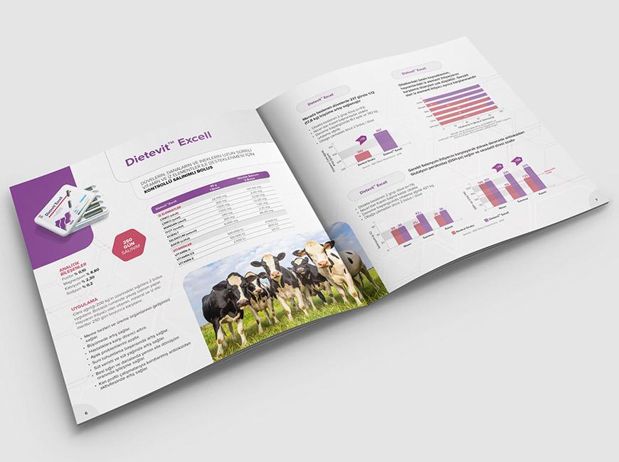 Pharma-Sem - Dietevit Katalog Tasarımı